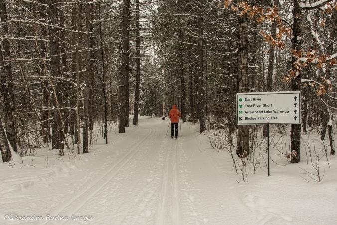 cross-country skiing in Arrowhead Provicnial Park