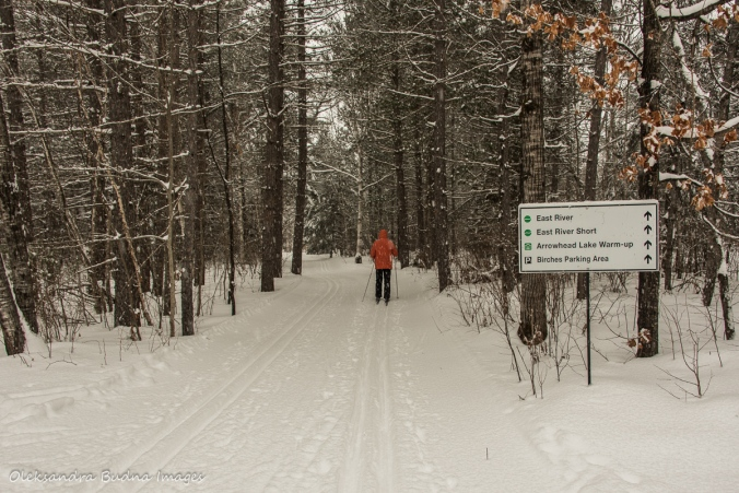 cross-country skiing in Arrowhead Provicnial Park