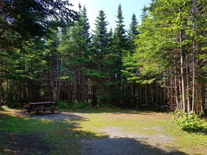 campsite at Berry Hill campground in Gros Morne
