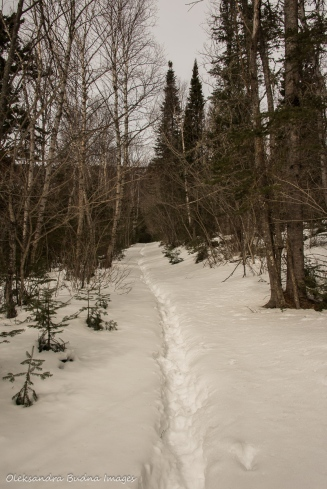 Talus Trail in Sleeping Giant provincial park in the winter