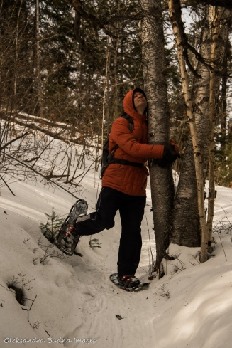 hugging a tree while snowshoeing at Windy Lake Provincial Park