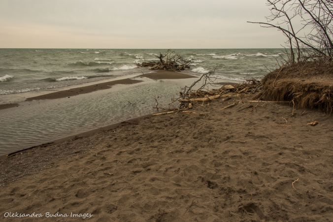 southernmost point in Poitn Pelee