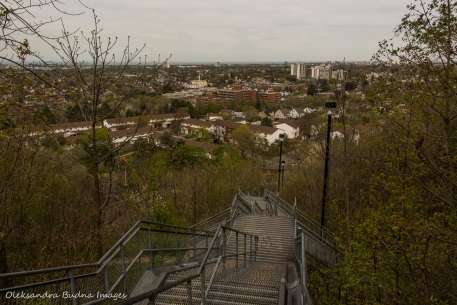 view of Hamilton from Kimberly stairs