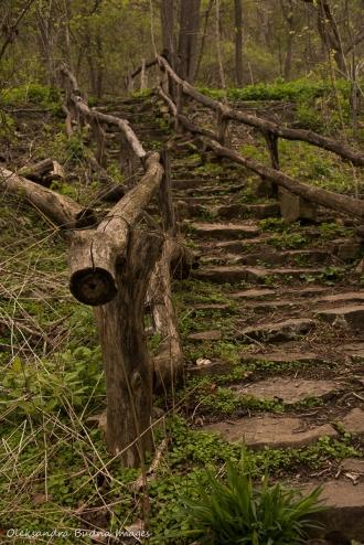 Uli stairs in Hamilton