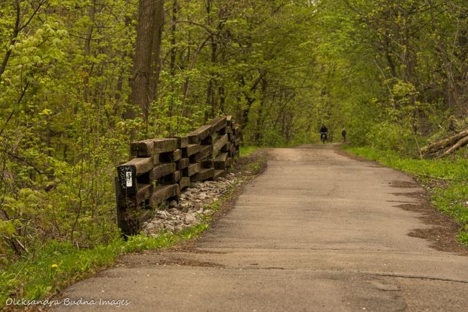 Escarpment Rail Trail and Bruce Trail in Hamilton
