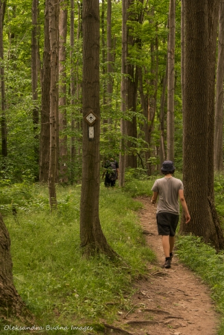 walking at Hockley Valley Nature Reserve