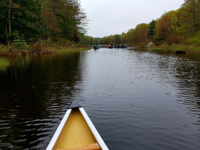 canoeing on the creek between Cox and Loucks lakes in Kawartha Highlands