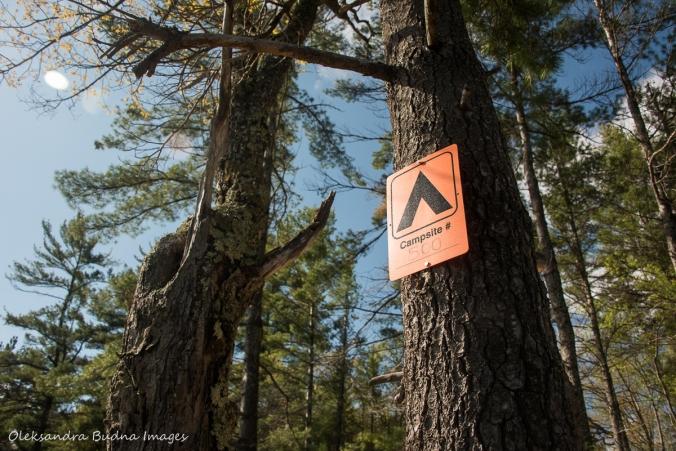 campsite 500 sign in Kawartha Highlands