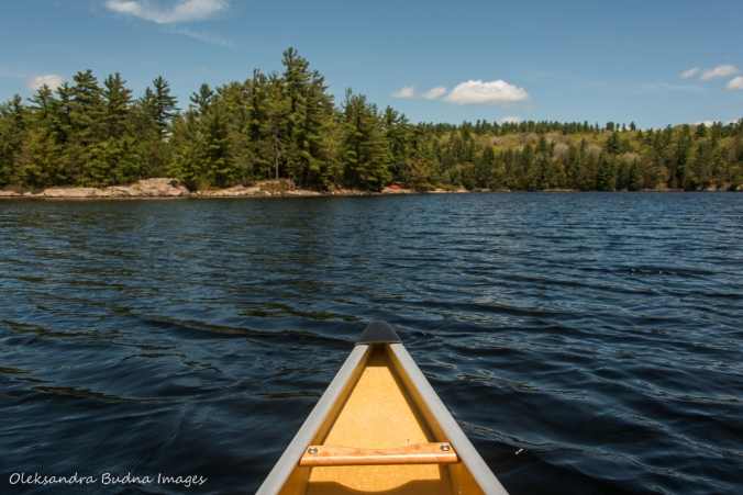 canoeing on Cox Lake in Kawartha Highlands