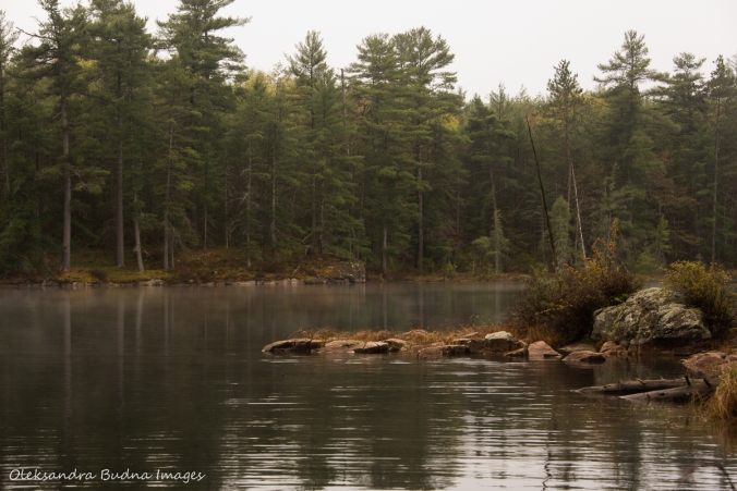 foggy evening on Sparkler Lake in Kawartha HighlandsLake