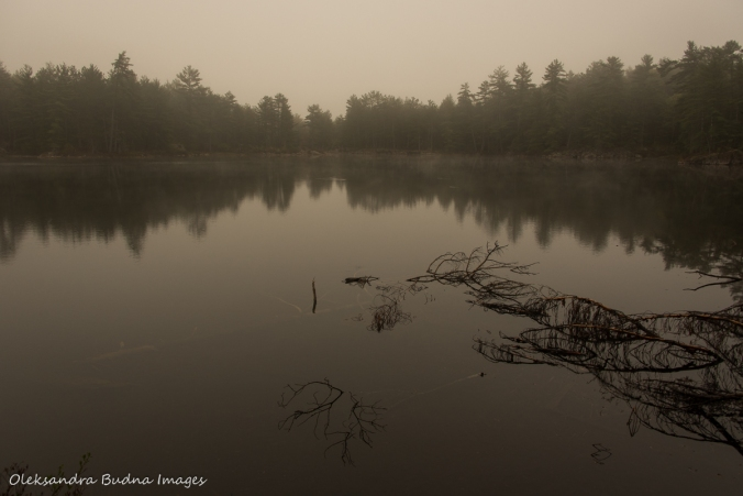 foggy Sparkler Lake in Kawartha Highlands