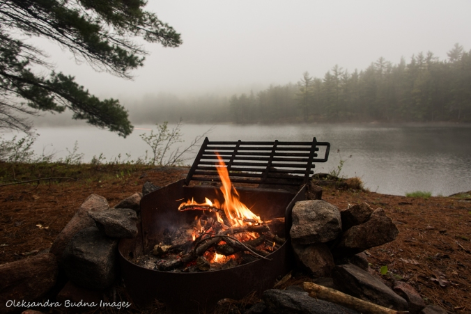 view from campsite 500 on Sparkler Lake in Kawartha Highlands