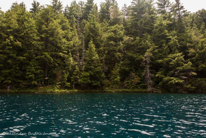 blue water on Nellie Lake