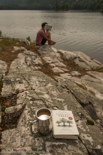 book and coffee on the rock at campsite 179 on Grace Lake in Killarney