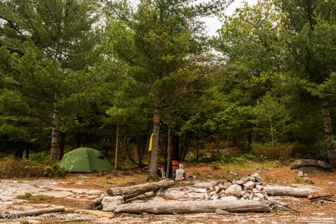 campsite 179 on Grace Lake in Killarney