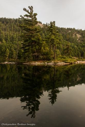 island on Grace Lake in Killarney Provincial Park