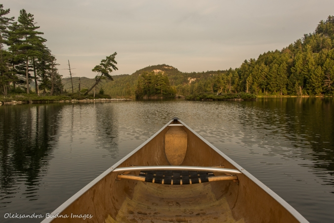 canoeing on Grace Lake in Killarney Provincial Park