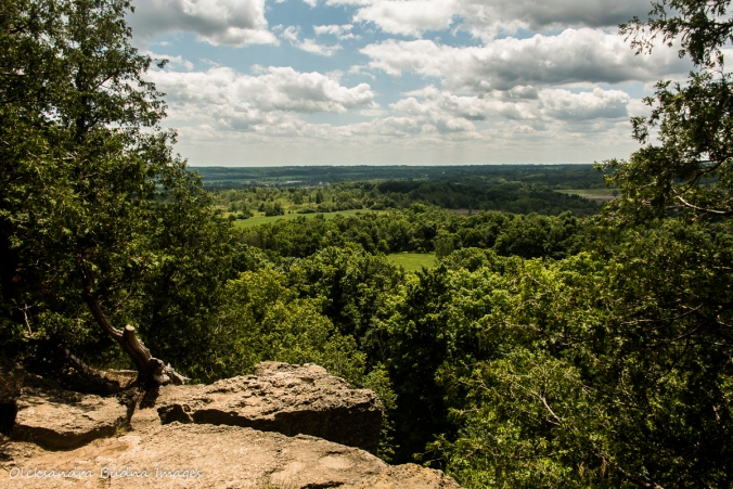 view from Rattlesnake point