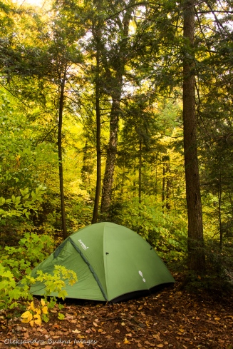 tent on the backcountry campsite on Parkside Bay in Algonquin in the fall