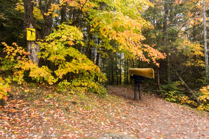 portaging from Rugged Lake to Smoke Lake in Algonquin in the fall