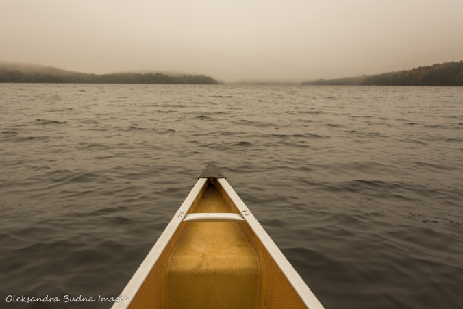 paddling on Smoke Lake in Algonquin in the fall