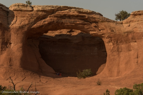 Tapestry Arch in Arches National Park