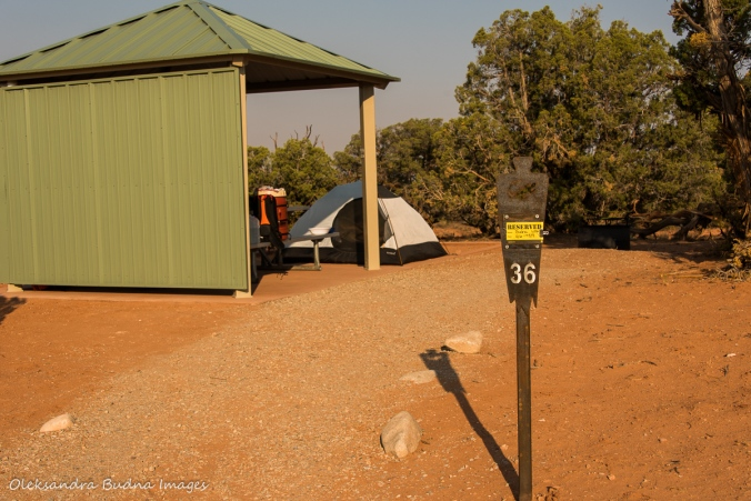 campsite 36 at Wingate Campground in Dead Horse Point State Park