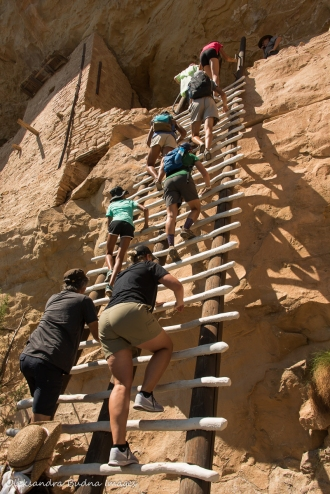 climbing a ladder to Balcony House in Mesa Verde