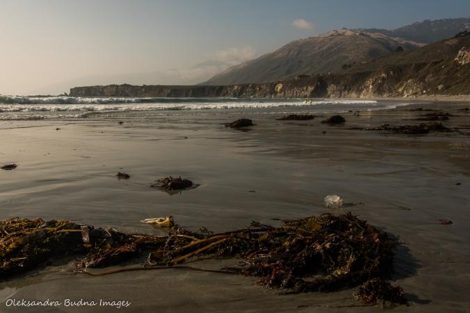Sand Dollar beach in California