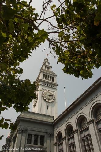 Ferry Plaza Farmers Market in San Francisco