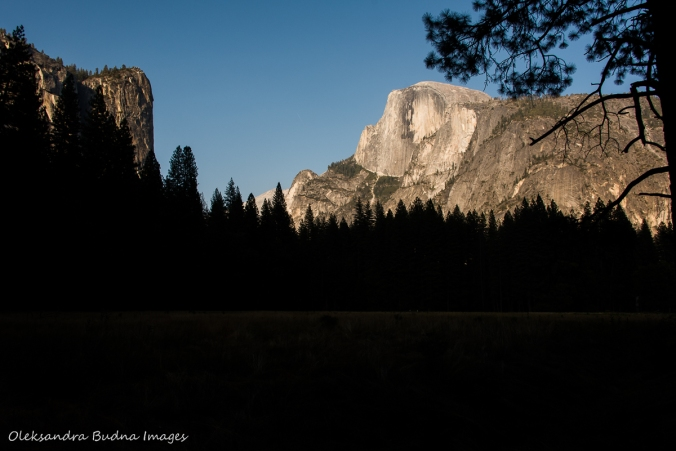 view of Half Dome in Yosemite