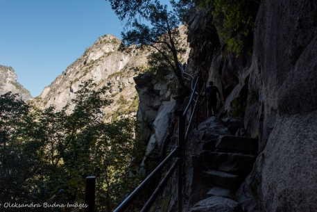 hiking the Half Dome trail in Yosemite