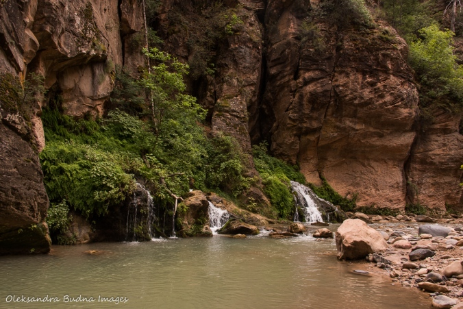 Big Creek in The Narrows in Zion