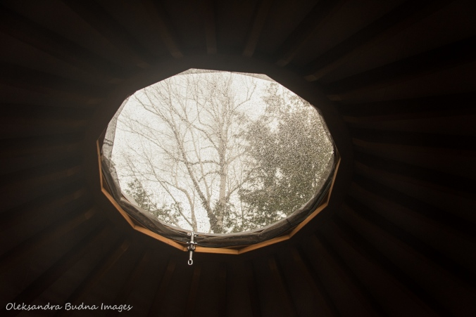 skylight in yurt 46 at MacGregor Point