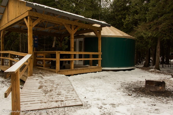 new yurt 46 at MacGregor Point