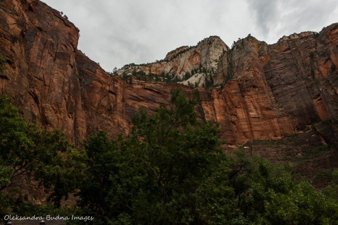 Temple of Sinawawa at Zion National Park