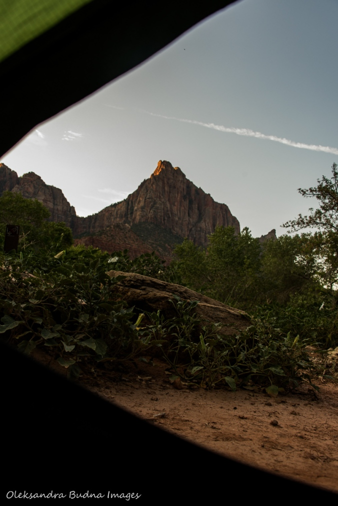 view from the tent at campsite 59 in Zion National Park
