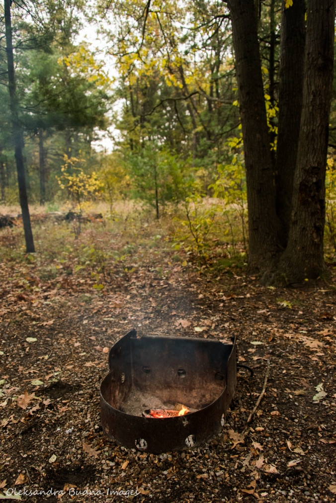 campfire at Pinery