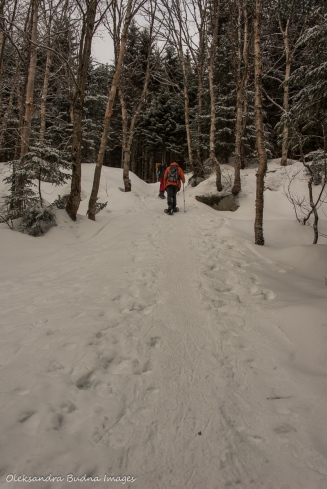 snowshoeing in Parc national du Mont-Mégantic in Quebec