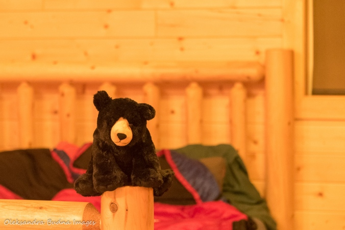 Stuffed black bear toy in the Black Bear's Den cabin at Silent Lake Provincial Park
