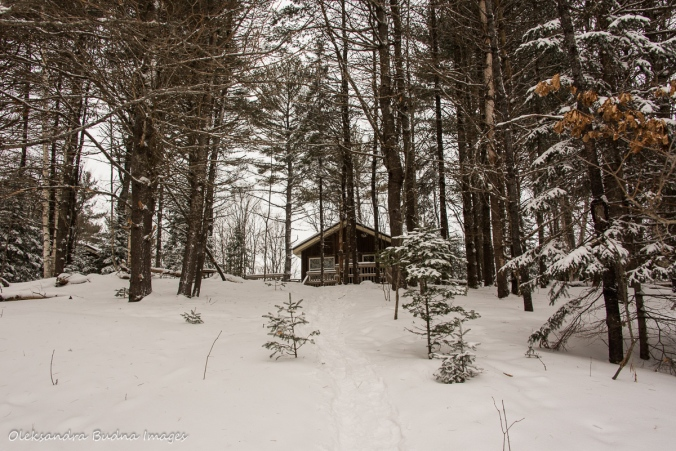 Black bear's cabin at Silent Lake Provincial Park in the winter