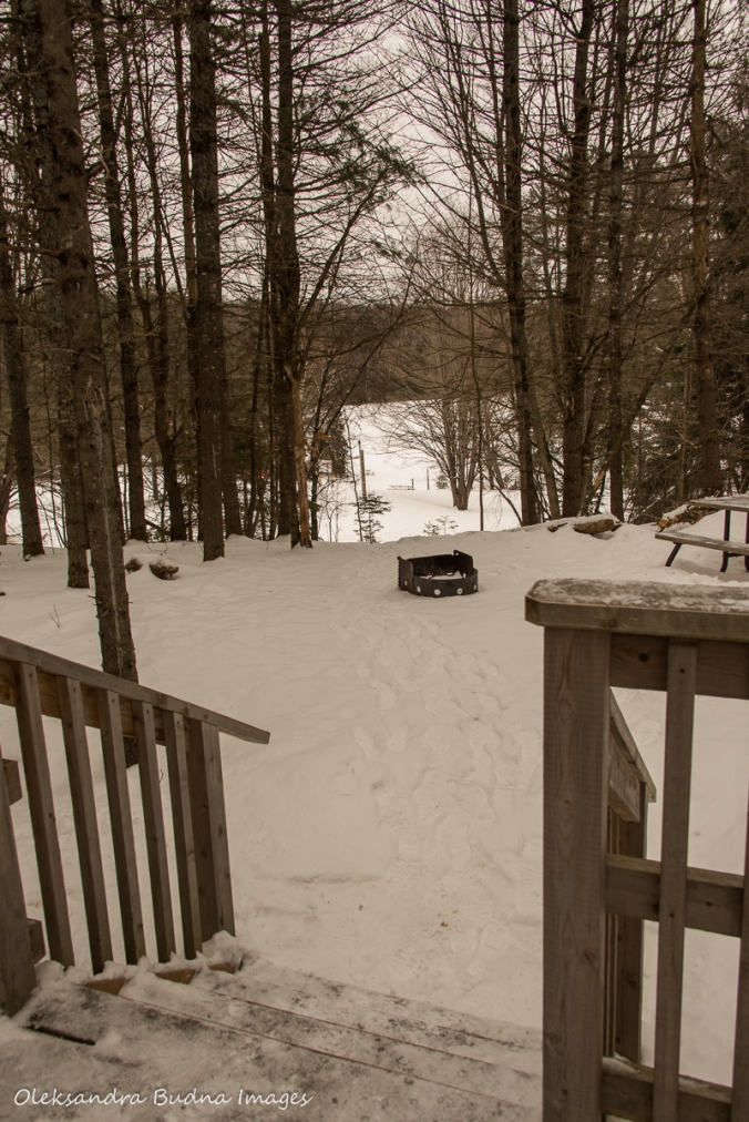 view from Black Bear's Den cabin at Silent Lake provincial park in the winter