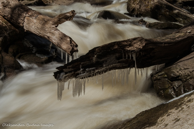 icicles above rushing water in the spring