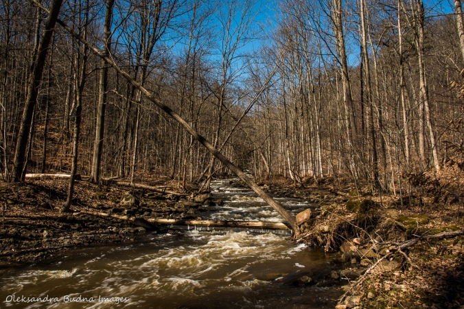 Grindstone creek near Bruce Trail in the spring