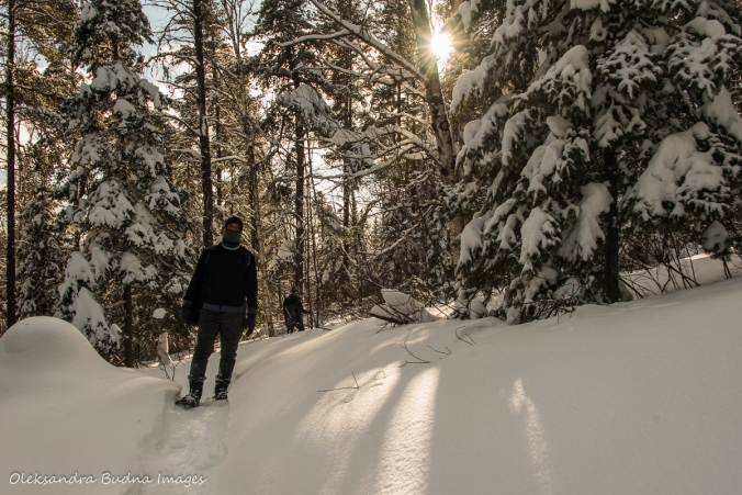 snowshoeing along the transition trail at Windy Lake provincial park in the winter