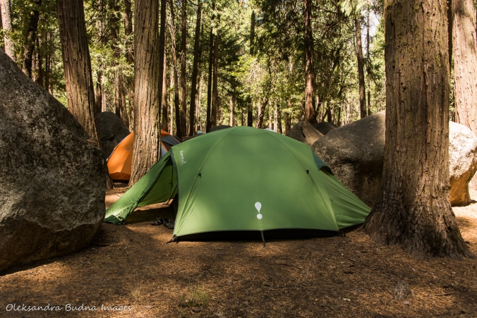 campsite 179 at Upper Pines campground in Yosemite national park