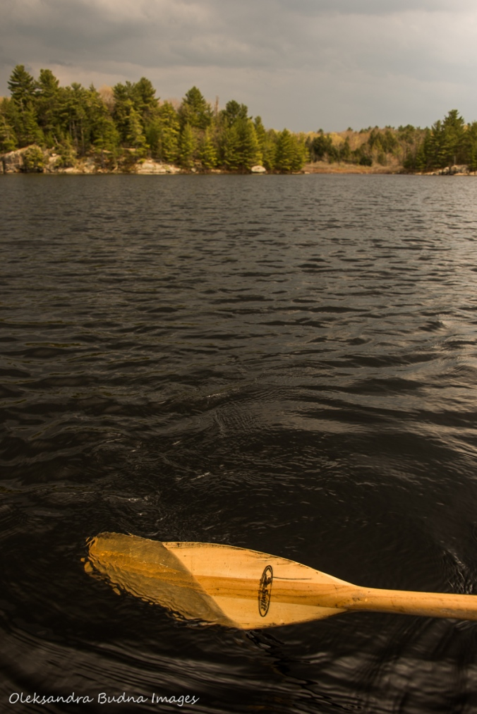 paddling on Spider lake at The Massasauga