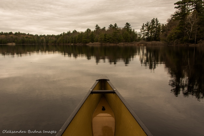 paddling Spider lake in The Massasauga Provincial Park