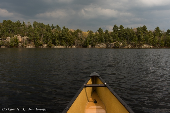 paddling at The Massasauga