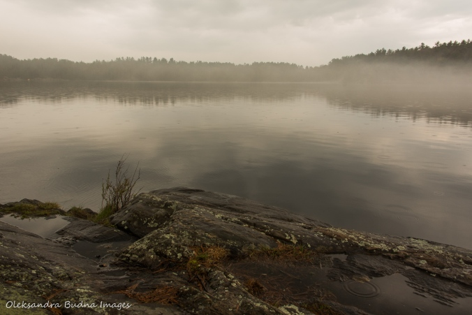 fog on Spider Lake at The Massasauga